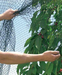 Ochranná sieť proti vtákom cená
