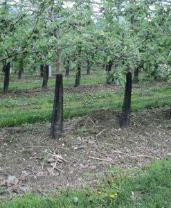 Sieť proti ohryzu hlodavcami je plastová samozatváracia sieťka na ochranu kmeňov ovocných drevín.