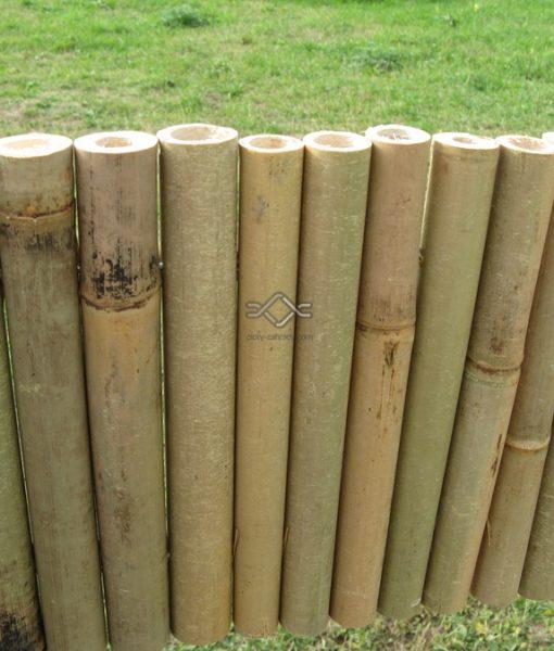 Záhonová obruba z bambusu, cena