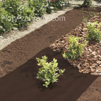 Agrotextília – mulčovacia textília cená je špecificky určená na kontrolu rastu burín a vytvorenie optimálnych podmienok pre rast pestovaných rastlín a kríkov (5)