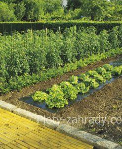 Netkané textílie zakrývacie cené, používa sa na zakrývanie zeleninových záhonov